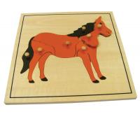 [Vkládací puzzle - Kůň]